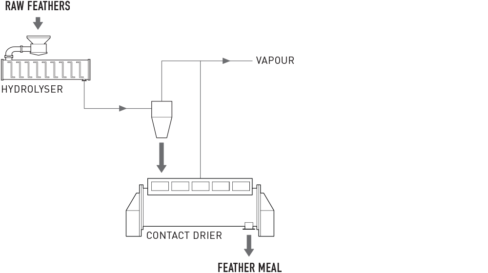 Continuous Feather Processing System